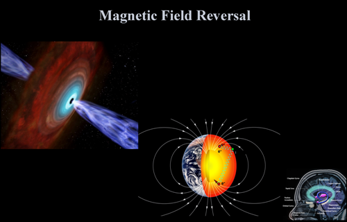 magnetic field reversal human_m